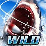 Wild Fishing Simulator