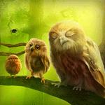 Живі шпалери чудо-ліс з совами